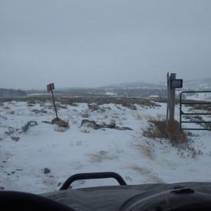 Snowing copy