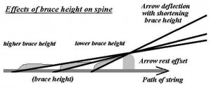 brace height - spine